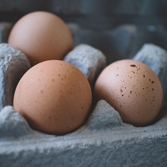 vejce jako zdroj proteinu